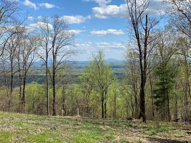 TBD Old Home Trail, Fancy Gap, VA 24328 (MLS #78009) :: Highlands Realty, Inc.