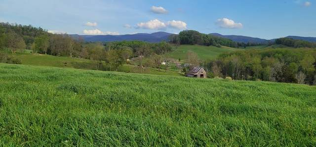 TBD Red Stone Road, Chilhowie, VA 24319 (MLS #78071) :: Highlands Realty, Inc.