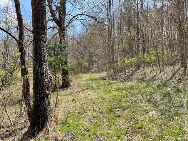 TBD Retreat Rd.- Lot 1008A, Hillsville, VA 24343 (MLS #78140) :: Highlands Realty, Inc.