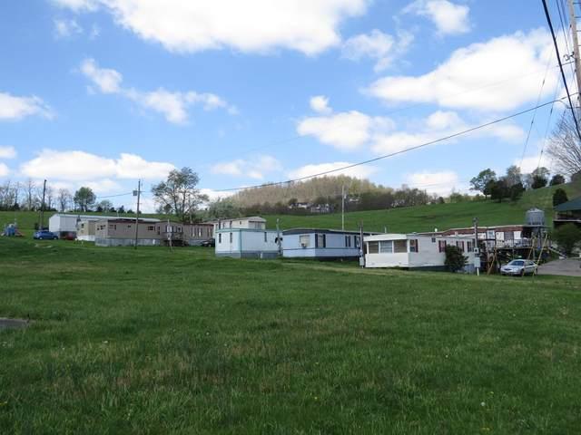 189 Harbor Drive, Lebanon, VA 24266 (MLS #78195) :: Highlands Realty, Inc.