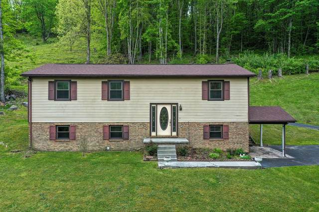 113 Crest Lane, Cedar Bluff, VA 24609 (MLS #78330) :: Highlands Realty, Inc.