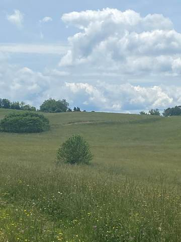 TBD Orleans Dr., Abingdon, VA 24210 (MLS #78540) :: Highlands Realty, Inc.