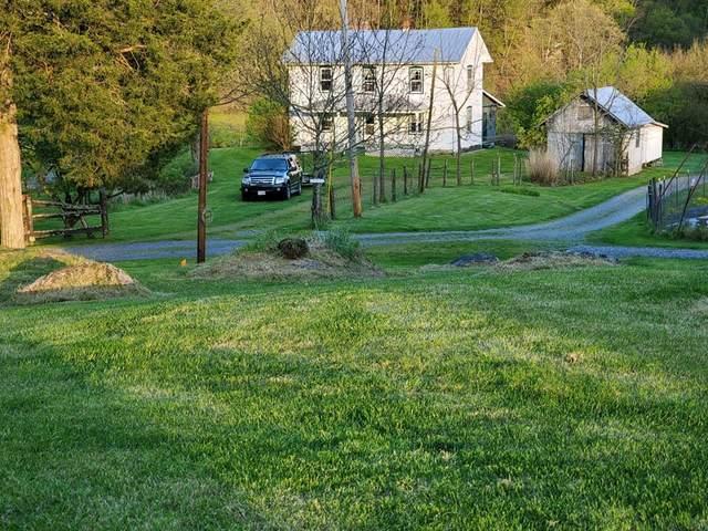 29035 Miller Farm Lane (Pvt), Meadowview, VA 24361 (MLS #78547) :: Highlands Realty, Inc.