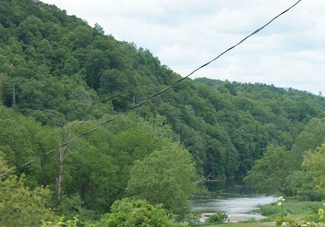 TBD Tree Top Ln, Fries, VA 24330 (MLS #78578) :: Highlands Realty, Inc.