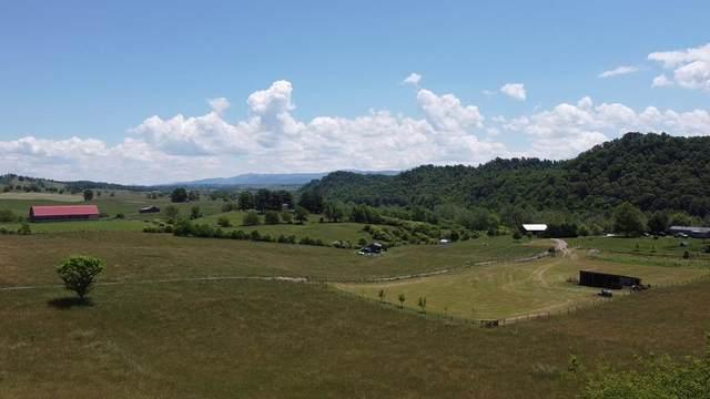29632 Isaac Lane, Meadowview, VA 24361 (MLS #78612) :: Highlands Realty, Inc.
