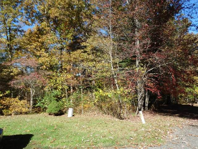 TBD Fairlake Ln, Laurel Fork, VA 24352 (MLS #78631) :: Highlands Realty, Inc.
