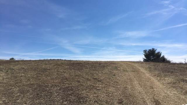 .96 ac Wilkins Lane, Wytheville, VA 24382 (MLS #78648) :: Highlands Realty, Inc.