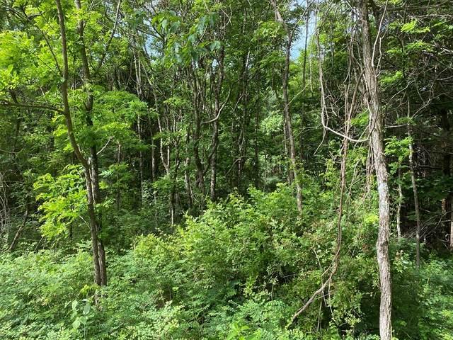 TBD Old Hollow Trail, Fancy Gap, VA 24328 (MLS #78653) :: Highlands Realty, Inc.