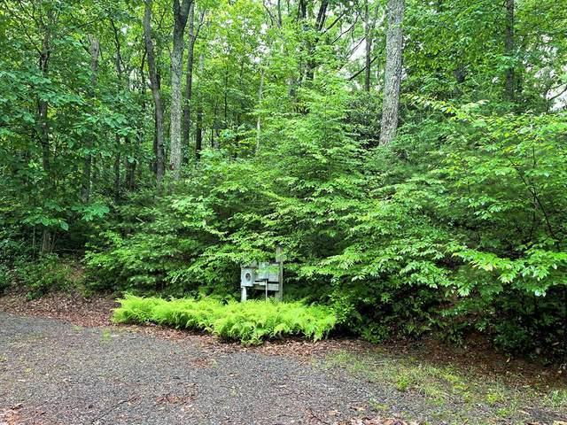 TBD Forest Park Lane, Fancy Gap, VA 24328 (MLS #78668) :: Highlands Realty, Inc.