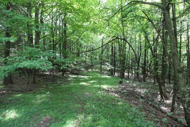 701 Harrison Ridge Rd, Fancy Gap, VA 24328 (MLS #78671) :: Highlands Realty, Inc.