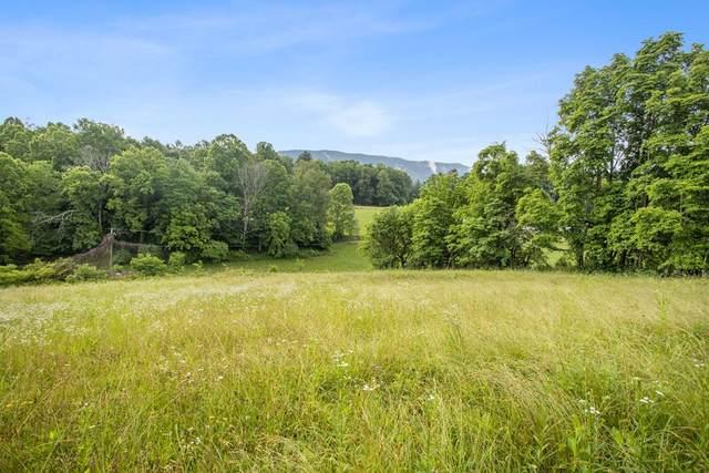 TBD Newton Ln, Abingdon, VA 24211 (MLS #78688) :: Highlands Realty, Inc.