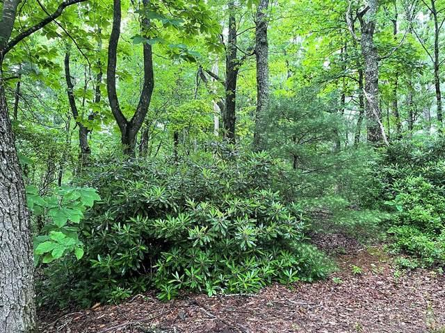 TBD Cascade Trail, Fancy Gap, VA 24328 (MLS #78721) :: Highlands Realty, Inc.