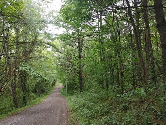 Lot 20 Smith Landing Lane, Hillsville, VA 24343 (MLS #78810) :: Highlands Realty, Inc.