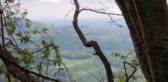 TBD Hines Branch Rd, Fries, VA 24330 (MLS #78872) :: Highlands Realty, Inc.