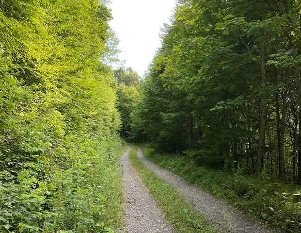 TBD Lynn Springs Rd, Swords Creek, VA 24649 (MLS #79157) :: Highlands Realty, Inc.