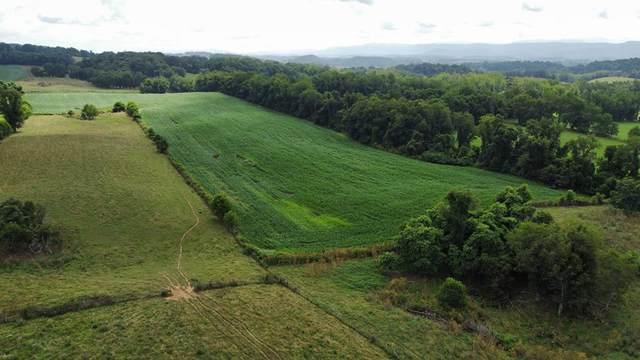TBD Cedar Creek Rd, Meadowview, VA 24361 (MLS #79160) :: Highlands Realty, Inc.