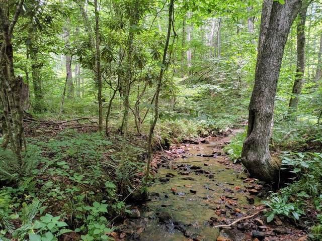 TBD Buffalo Mountain, Willis, VA 24380 (MLS #79165) :: Highlands Realty, Inc.