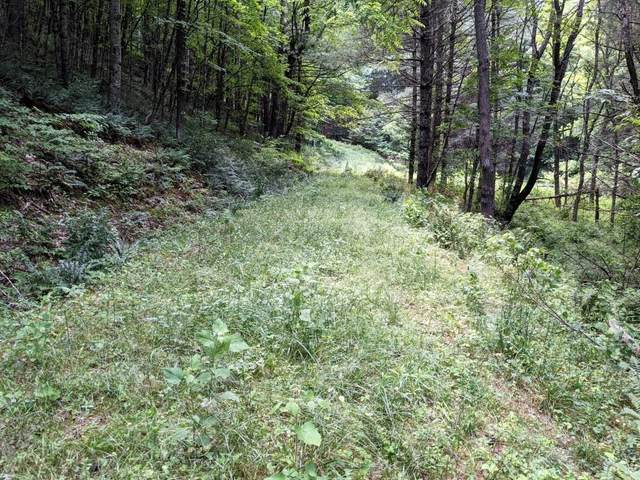 18 acre Old Kentucky Ln, Elk Creek, VA 24326 (MLS #79201) :: Highlands Realty, Inc.