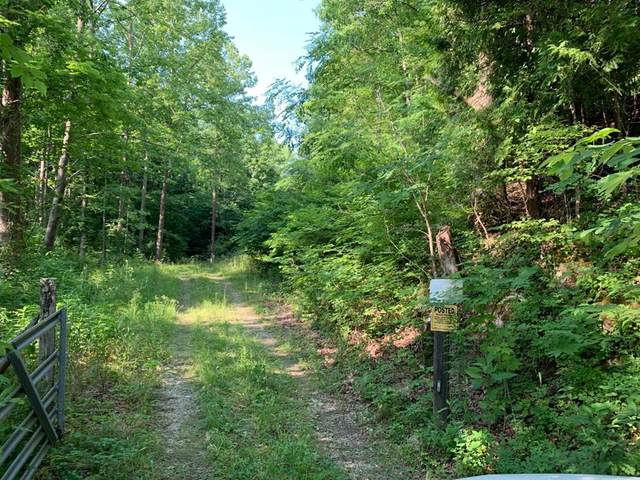 33.44ac Sunset River Rd, Ceres, VA 24318 (MLS #79220) :: Highlands Realty, Inc.