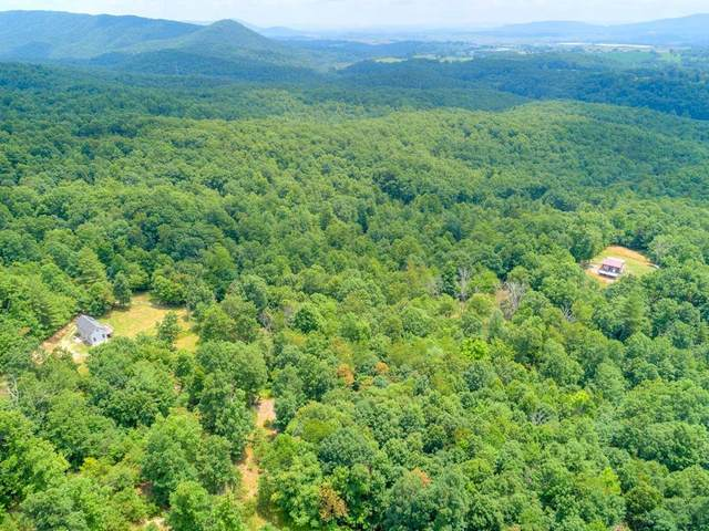 1039 Indian Meadow Lane, Wytheville, VA 24382 (MLS #79276) :: Highlands Realty, Inc.