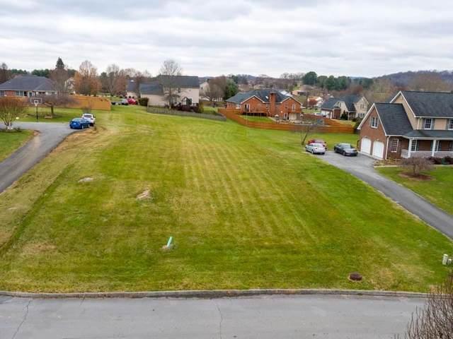 132 Sterling Court, Bluff City, TN 37618 (MLS #79420) :: Southfork Realty