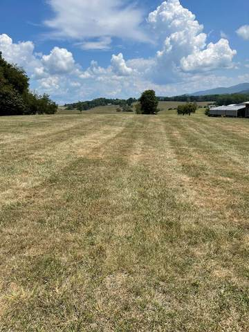 TBD Whitetop Road, Chilhowie, VA 24319 (MLS #79616) :: Highlands Realty, Inc.