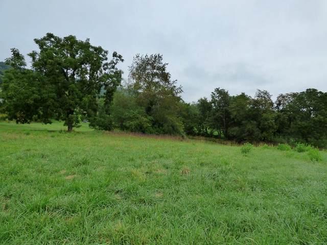 TBD Birdi Lane, Draper, VA 24324 (MLS #79894) :: Highlands Realty, Inc.