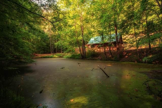 31792 Nature Way, Glade Spring, VA 24340 (MLS #80074) :: Highlands Realty, Inc.
