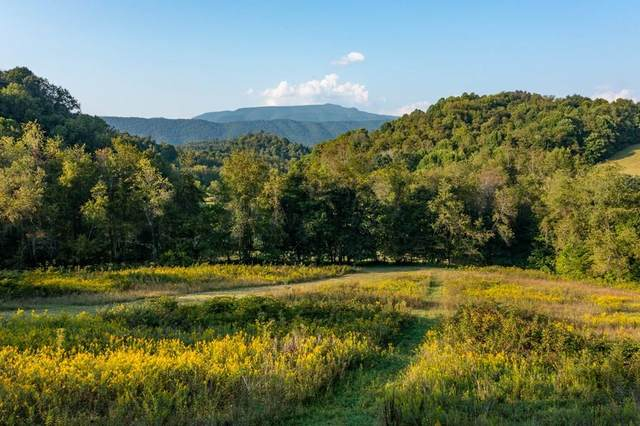 TBD Rich Valley Rd, Meadowview, VA 24361 (MLS #80135) :: Highlands Realty, Inc.