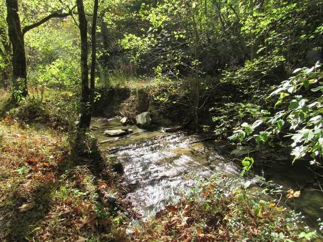 14322 Smith Creek Road, Bristol, VA 24202 (MLS #80484) :: Southfork Realty