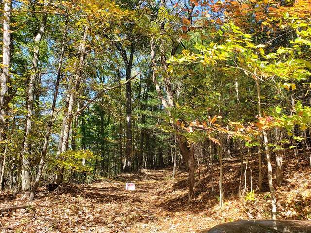 TBD Summerfield Rd., Elk Creek, VA 24326 (MLS #80561) :: Southfork Realty
