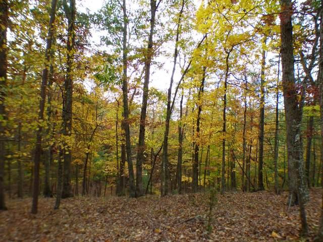 TBD Griffith Knob Lane, Wytheville, VA 24382 (MLS #80563) :: Southfork Realty