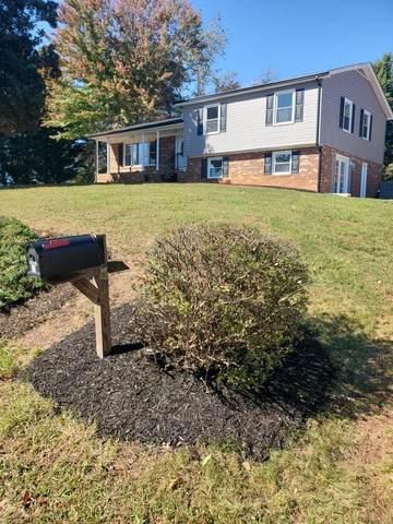 56 Oak Ridge, Bassett, VA 24055 (MLS #80569) :: Southfork Realty