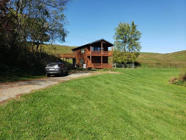 421 Carsonville Rd., Elk Creek, VA 24326 (MLS #80574) :: Southfork Realty