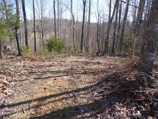 TBD Brownstone Lane, Woodlawn, VA 24381 (MLS #63973) :: Highlands Realty, Inc.