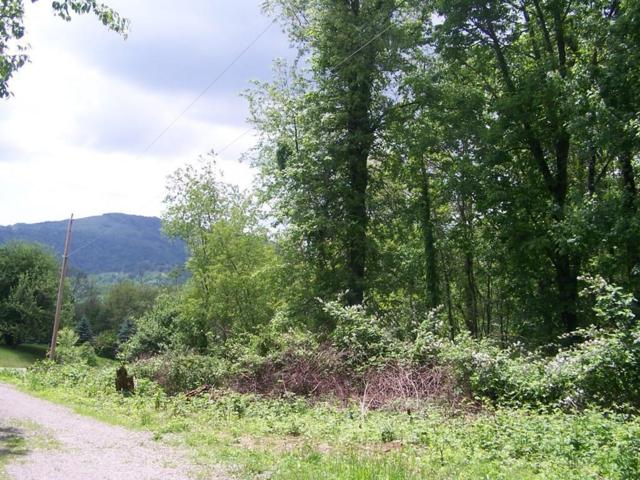 TBD Winter Place Lane, Independence, VA 24348 (MLS #64904) :: Highlands Realty, Inc.