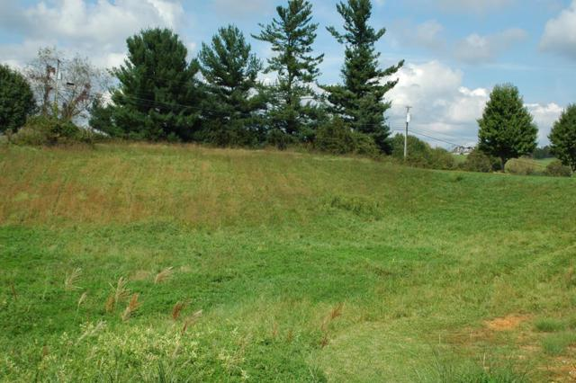 TBD Winterham Drive, Abingdon, VA 24211 (MLS #66243) :: Highlands Realty, Inc.