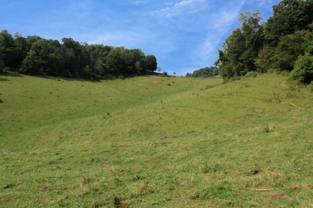 tbd Etter Road, Rural Retreat, VA 24368 (MLS #66269) :: Highlands Realty, Inc.
