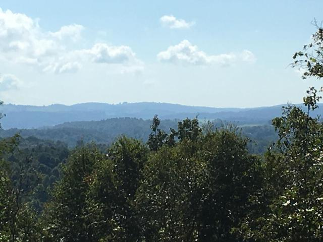 TBD Summit Lane, Woodlawn, VA  (MLS #66427) :: Highlands Realty, Inc.