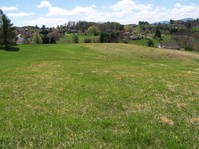 TBD Deerfield Circle, Galax, VA 24333 (MLS #67363) :: Highlands Realty, Inc.