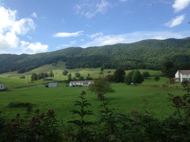 1136 Beartown Rd., Tazewell, VA 24651 (MLS #68711) :: Highlands Realty, Inc.