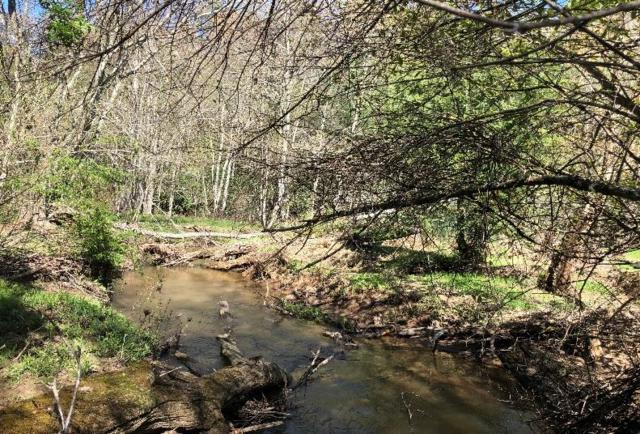 TBD Coulson Church Road And Rotenizer Drive, Hillsville, VA 24343 (MLS #69753) :: Highlands Realty, Inc.