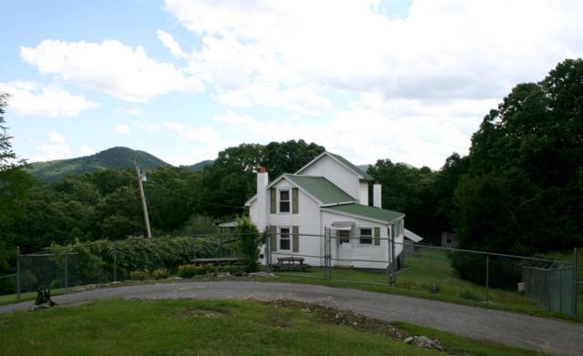 2751 Crawfish Road, Rural Retreat, VA 24368 (MLS #69983) :: Highlands Realty, Inc.