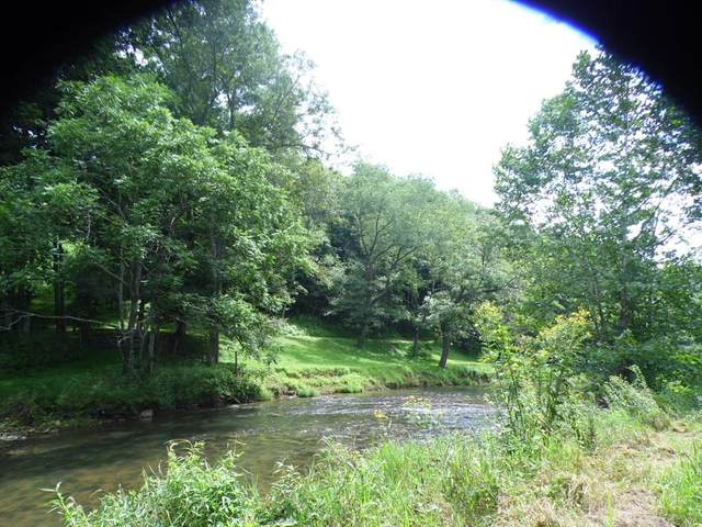 TBD Rainbow Trout Lane, Woodlawn, VA 24381 (MLS #70795) :: Highlands Realty, Inc.