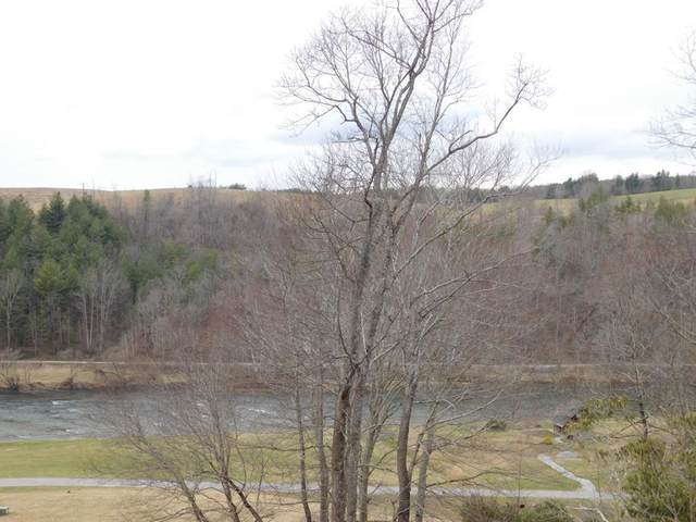 #50 River Walk Lane, Independence, VA 24348 (MLS #73448) :: Highlands Realty, Inc.