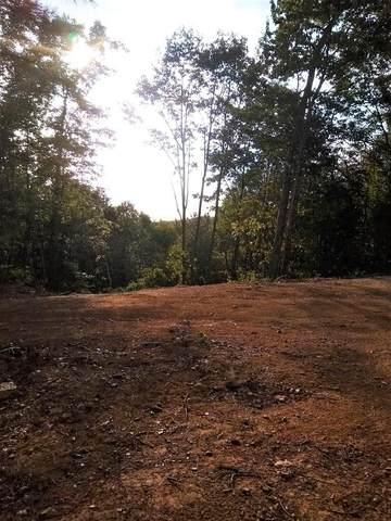 TBD Middle Fork Rd., Marion, VA 24354 (MLS #73659) :: Highlands Realty, Inc.