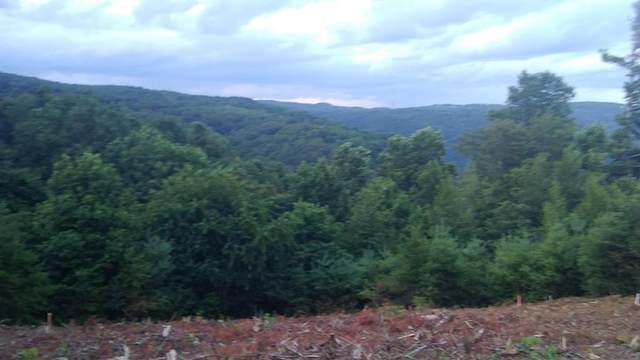 TBD Panorama Dr, Fancy Gap, VA 24328 (MLS #75013) :: Highlands Realty, Inc.