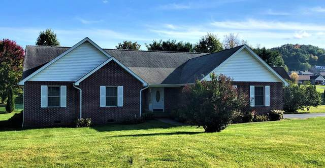 18674 Grahams Drive, Abingdon, VA 24211 (MLS #75920) :: Highlands Realty, Inc.