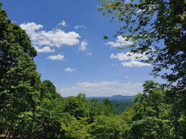Lot 4&5 Forest Trl, Independence, VA 24348 (MLS #74368) :: Highlands Realty, Inc.