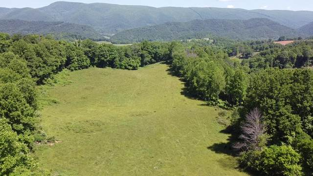 TBD Buckeye Hollow Rd, Saltville, VA 24370 (MLS #75956) :: Highlands Realty, Inc.
